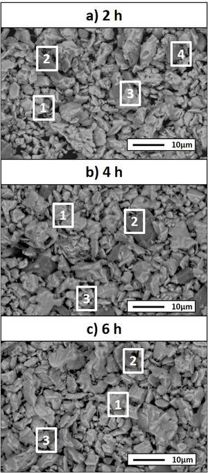 SEM micrographs of powders of the samples Ti:SiC:Cf with a molar ratio of 3:1.5:0.5 heat treated at 1300°C for different holding times: (a) 2h, (b) 4h and (c) 6h.