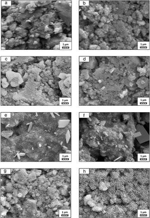 SEM micrographs of fine wafer before (a) and after immersion in LRS for (b) 1 day; (c) 3 days; (d) 5 days; (e) 7 days; (f) 14 days; (g) 21 days and (h) 28 days (20,000×).