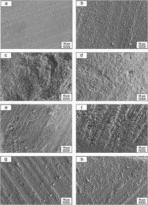 SEM micrographs of fine wafer before (a) and after immersion in HBP for (b) 1 day; (c) 3 days; (d) 5 days; (e) 7 days; (f) 14 days; (g) 21 days and (h) 28 days (500×).