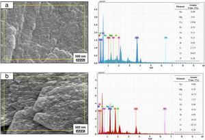 SEM micrographs and EDS analysis results of (a) coarse and (b) fine wafers soaked in LRS for 28 days.