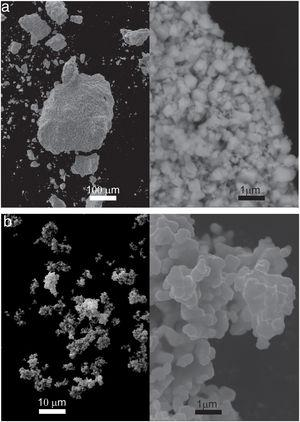 Morphology and particle size of raw powders: (a) IrO2 and (b) Ta2O5.