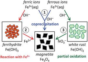 Schematic representation of the three main chemical routes to obtain magnetite: (1) magnetite formation by controlled co-precipitation from both Fe(II) and Fe(III) ions, (2) magnetite formation from Fe(III) ions through a solid ferrihydrite Fe(OH)3 precursor and Fe(II) ions by ammonia diffusion, and (3) magnetite formation from Fe(II) ions through a solid white rust Fe(OH)2 precursor by partial oxidation with nitrate ions. Reprinted with permission from [51].