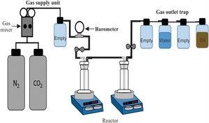Schematic diagram of the reactor used to perform the CO2 absorption tests.