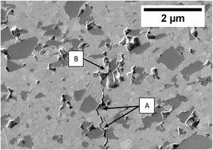 FE-SEM image of crack propagation of the 15SiC composite sintered at 1350°C by SPS.