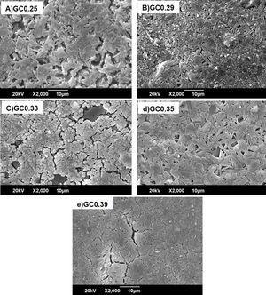 SEM images of the sintered samples.