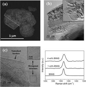 (a) HRSEM, and (b and c) HRTEM images of the synthesized BNNS, (d) Raman spectra of the synthesized BNNS and the BNNS/3YTZP composites.