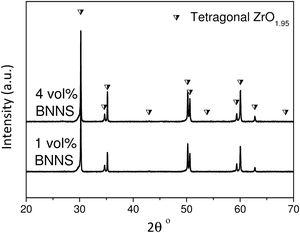 X-ray diffraction patterns of the BNNS/3YTZP composites.