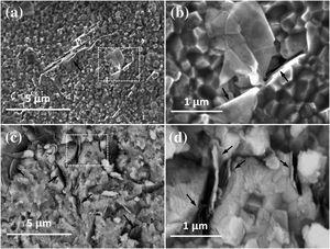 High–resolution SEM images of the fracture surfaces of the composites with (a and b) 1vol%, (c and d) 4vol% BNNS. The images in (b) and (d) show high magnification of the selected areas in (a) and (c), respectively.