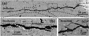 (a) SEM image showing a horizontal indentation-induced crack on the c.s. surface of the composite with 4vol% BNNS. (b and c) High magnification SEM images of the selected areas in (a), revealing BNNS debonding, crack branching, deflection and bridging.