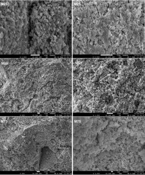 SEM micrographs of consolidated concrete.
