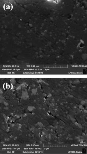 SEM micrographs of samples sintered at 1300°C for 2h (a) DM04 and (b) DM08.