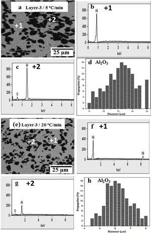 BSE micrographs and EDS analysis of PLS15 samples: consolidated at (a)–(d) 5°C/min; (e)–(h) 20°C/min.
