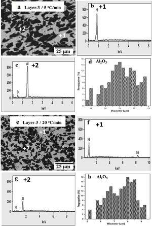 BSE micrographs and EDS analysis of PLS25 samples: consolidated at (a)–(d) 5°C/min; (e)–(h) 20°C/min.