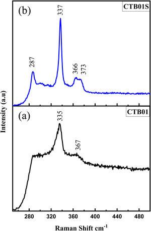 Raman spectra of the CZTS thin films. (a) As deposited sample CTB01, (b) heat treated sample CTB01S.