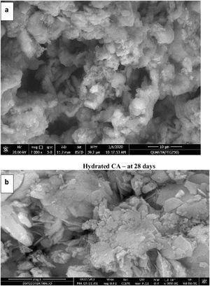 SEM images for calcined CA and C3A at (1000 & 1200°C) as in (a and b) respectively after hydration for 28 days.