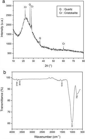 XRD patterns (a) and infrared spectrum (b) of EP.