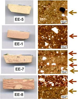 Photographs on sections (left) and micrographs of thin-sections, plain light (right). Colored arrows on the right indicate probable mixing of clay raw materials.