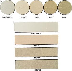 The appereance of the samples: (a) dry-pressed discs (50mm in diameter), and (b) wet-pressed tiles (25mm×120mm).