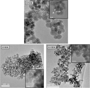 TEM images of Fe3O4–chitosan nanocomposites prepared with 1mL of GA.