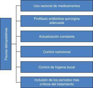 Elementos principales para los equipos de salud, prevenir alteraciones de la microbiota gastrointestinal en individuos con fisuras labiopalatinas. Fuente: elaboración propia, adaptado de Tovani Palone y Saldias Vargas2.