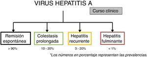 Cursos clínicos de la infección por el virus de hepatitis A. Los números en porcentaje representan las prevalencias.