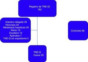 Pacientes incluidos en el estudio. TNE-G: tumores neuroendocrinos gástricos; TNE-GI: tumores neuroendocrinos gastrointestinales.