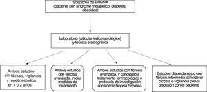 Evaluación de pacientes con sospecha de EHGNA para establecer la ausencia y/o la presencia de fibrosis.