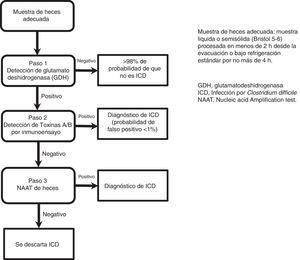 Algoritmo multipasos para el diagnóstico de ICD.