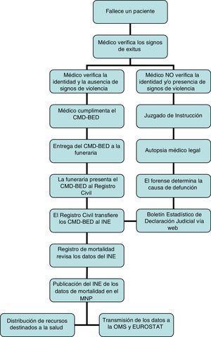 Procedimiento general de manejo y notificación de fallecimientos en España.