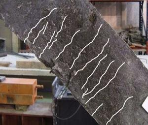 Patrón de fisuración de una diagonal traccionada al 2,5‰ de deformación media.