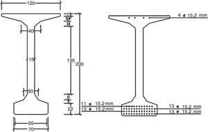 Dimensiones (cm) y armadura activa de la sección transversal.