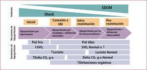 Manifestaciones y mecanismos de hipoperfusión en el shock séptico En la etapa inicial de la reanimación del Shock Séptico el mecanismo central que determina la hipoperfusión es la hipovolemia. Durante esta etapa las manifestaciones de hipoperfusión más evidentes son la vasoconstricción periférica, la reducción del flujo hepatoesplácnico que puede detectarse por tonometría gástrica (Delta CO2 g-a, delta CO2 gastrico - arterial), y la disminución de la saturación venosa central (SVO2). Una vez que se corrige la hipovolemia estas manifestaciones de hipoperfusión pueden revertirse, sin embargo, se hace evidente la disfunción vascular y miocárdica que pueden determinar persistencia de hipoperfusión, la cual en esta etapa se expresa fundamentalmente como hiperlactatemia, y que coincide con la expresión de disfunciones orgánicas progresivas. Estas alteraciones normalmente se van corrigiendo con el uso de vasopresores, inótropos y eventualmente la conexión del paciente a ventilación mecánica (VM). Sin embargo, en aquellos pacientes que evolucionan desfavorablemente con un Sindrome de disfunción multiorgánica (SDOM) se piensa que este está determinado por alteraciones microcirculatorias y mitocondriales, las cuales ya no dependen de la reanimación.