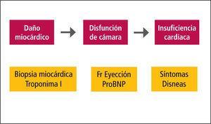 Marcadores de cardiotoxicidad
