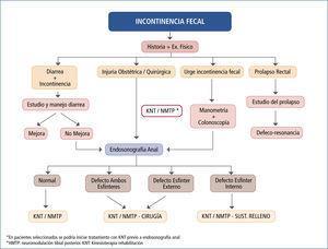 Algoritmo en manejo incontinencia fecal CEPP - CLC