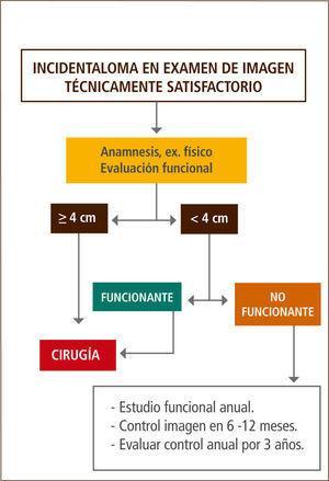 Algoritmo propuesto para la evaluacion de un incidentaloma suprarrenal