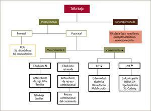Algoritmo de evaluación inicial del paciente con talla baja