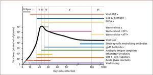 Historia natural e inmunopatogénesis de la infección por hiv 1