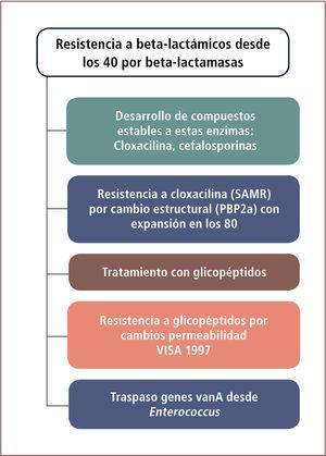 Evolución de los Mecanismos de Resistencia en S. aureus