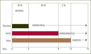 Causas parto prematuro En gemelos monocigóticos, días de división postfecundación. División placentaria y amniótica (The 11–14 week Scan, Fetal Medicine Foundation. K. Nicolaides).