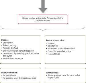 causas de sangrado en el embarazo pdf