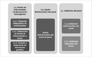 Modelo de diseño y validación del panel de enfermedades cardiovasculares heterogéneas La fase 1.a. corresponde al diseño de un panel de genes aplicados a enfermedades cardiovasculares. Incluye la búsqueda de información clínica y genética. En la fase 1.b. se encuentra el diseño bioinformático del panel para su fabricación. La fase 1.c corresponde a la evaluación bioinformática del diseño y a la validación diagnóstica con muestras clínicas conocidas para establecer su sensibilidad y especificidad.