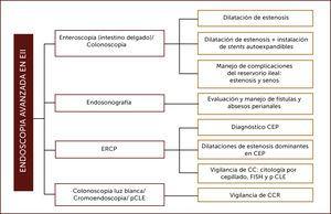 ROL DEL ENDOSCOPISTA AVANZADO EN PACIENTES CON EII Adaptado de Modha K, Navaneethan U. Advanced therapeutic endoscopist and inflammatory bowel disease: Dawn of a new role. World J Gastroenterol 2014. Siglas: CPRE: colangiopancreatografía retrógrada endoscópica, CEP: Colangitis esclerosante primaria, CC: Colangiocarcinoma, FISH: Hibridación in situ con fluorescencia, pCLE: endomicroscopia láser confocal, CCR: Cáncer colorrectal.