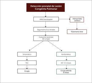 FLUJOGRAMA DE ACCIÓN FRENTE AL DIAGNÓSTICO DE UNA LESIÓN CONGÉNITA PULMONAR PRE O POSNATAL
