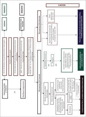 ALGORITMO PARA DIAGNÓSTICO PRENATAL DE SINDROME DE AKINESIA FETAL (FADS)