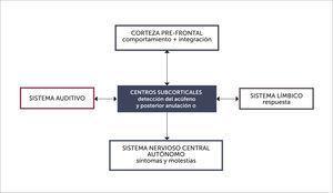 TEORÍA NEUROFISIOLÓGICA