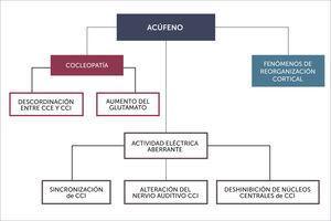 TEORÍAS FISIOPATOGÉNICAS. CCE Y CCI: CÉLULAS CILIADAS EXTERNAS E INTERNAS