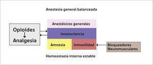 ESQUEMA RESUMEN DEL EFECTO DE LOS ANESTÉSICOS GENERALES EN UNA ANESTESIA GENERAL BALANCEADA Los principales efectos de los anestésicos generales son la inconsciencia, amnesia e inmovilidad. Estos son complementados con los bloquedadores neuromusculares (BNM) en el caso de la inmovilidad y con los opioides para la inconsciencia. Además, la anestesia general per se contribuye a la analgesia generada por los opioides debido al establecimiento del estado de pérdida de consciencia. Todos estos efectos se producen con una mantención de la homeostasis interna.