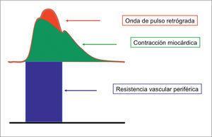 Componentes de la presión arterial
