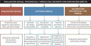 Esquema diagnóstico en pacientes con disfunción eréctil