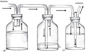 Frasco recolector (izquierda), trampa de agua (centro) y frasco de aspiración (derecha)
